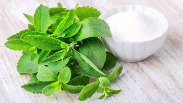 The Various Health Benefits Of Stevia