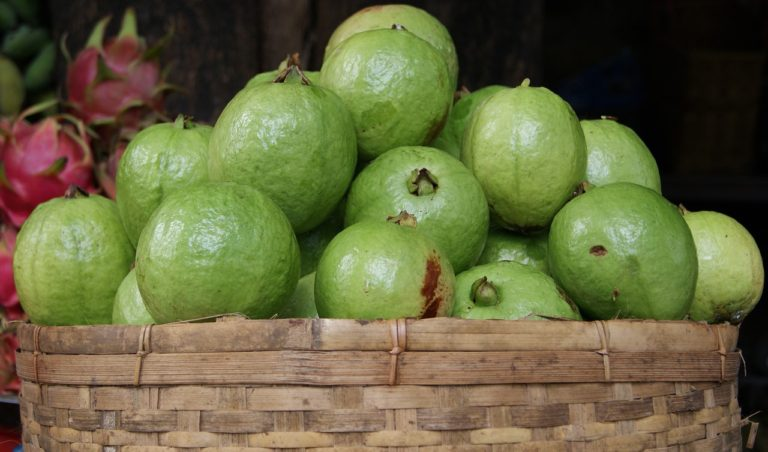 Why Guavas are Good for Health