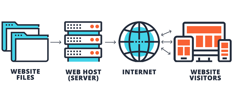 What Are The Different Types Of Web Hosting
